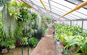 Centre horticole